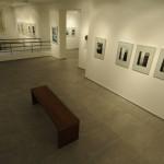 Vystavy2009_Llauffova__019